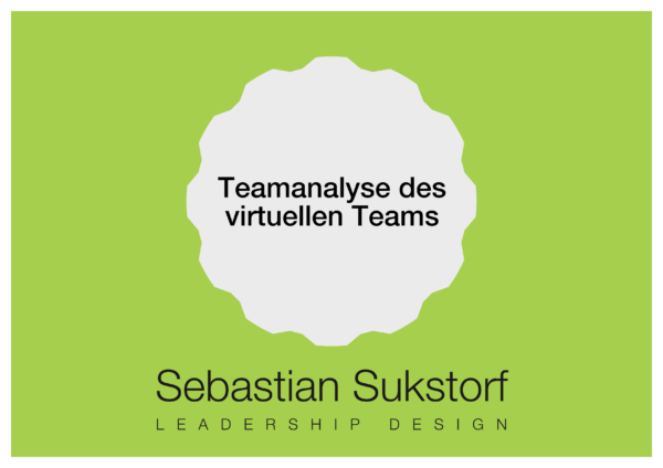 Teamanalyse des virtuellen Teams